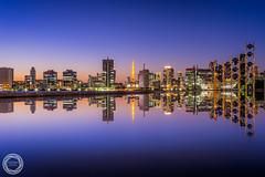 Symmetry of Tokyo Cityscape (45tmr) Tags: japan tokyo twilight cityscape nightscape 東京 夜景 pentaxk3
