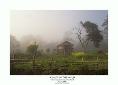 hut in the wild (shaan2noo) Tags: winter india fog security hut assam kaziranga kaziranganationalpark kohora kohorarange