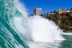 NBSurf_DY_2016_01_31_622.jpg (Neil Banek) Tags: surf sydney freshwater deewhy northernbeaches