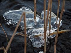 Ice Art (Ostseetroll) Tags: winter art ice geotagged deutschland eis deu schleswigholstein kunstwerk scharbeutz gronenberg geo:lat=5404271995 geo:lon=1070169716