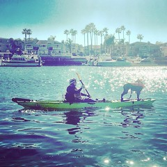 #kayaking with X-13 #dogsofinstagram #dogonkayak