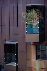 P-00385-No-148_rt (Steve Lippitt) Tags: windows building london art window architecture architecturaldetail unitedkingdom structures architectural institutes riba edifice edifices royalinstituteofbritisharchitects geo:country=unitedkingdom geo:city=london exif:make=fujifilm camera:make=fujifilm geostate exif:aperture=36 exif:isospeed=400 camera:model=xt1 exif:model=xt1 exif:focallength=106mm exif:lens=xf50140mmf28rlmoiswr geo:location=ribaheadquarters66portlandplacew1b1ad geo:lon=014499605184 geo:lat=51521237131918