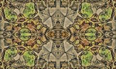 Tableau of Homogeneity (Paul B0udreau) Tags: ontario canada abstract texture mirror nikon digitalart samsung kaleidoscope niagara master layer photomatix tonemapping nikkor1855mm d5100 samsungmaster paulboudreauphotography nikond5100 photoshopcc