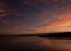 (hmxhm) Tags: newzealand sunrise olympus wellington aotearoa