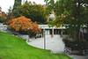 DSC00504 (elenafrancesz) Tags: fall uw campus wordless
