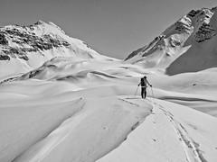 Skier approaching Crowfoot Pass, Banff National Park, Alberta (Cwep) Tags: canada blackwhite skiing artistic location alberta activity banffnationalpark 2011 crowfootpass