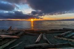 Morning Has Broken (Paul Rioux) Tags: morning beach clouds sunrise dawn bc britishcolumbia sony logs victoria vancouverisland driftwood rays daybreak sunstar colwood esquimaltlagoon a6000 coburgpeninsula prioux