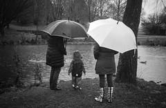 Schirmherrschaft (chipsmitmayo) Tags: park leica winter film rain analog umbrella see zoom ducks ella mini monochrom enten schwarzweiss regen 129 stadtpark matsch sauerland fttern selfdeveloped schmallenberg schirm blackandhwite 3570 adox varioelmar kleinbild selbstentwickelt silvermax