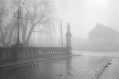 (In the) Fog (DomiKetu) Tags: street blackandwhite bw mist black monochrome fog mono blackwhite nikon trix nikonf100 400 sibiu selfdeveloped blackwhitephotos barrythorntons2bathdeveloper