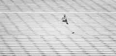 loneliness (poludziber1) Tags: paris city capital street stairs stripes streetphotography blackwhite people urban challengeyouwinner challengegamewinner