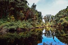 Barva Volcano (cataava) Tags: lake green nature forest landscape volcano nationalpark nikon costarica barva