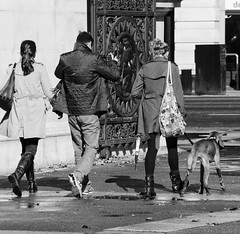 Just walking the dog (cathbooton) Tags: shadow people blackandwhite dog pet london umbrella bag puddle gate walk marblearch wetpavement