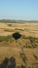 mallorcaballons2015_031