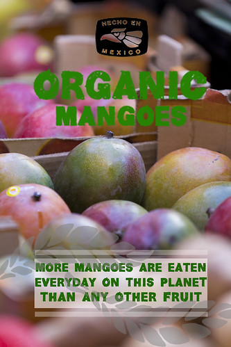 """Mangoes • <a style=""""font-size:0.8em;"""" href=""""http://www.flickr.com/photos/139081453@N03/25131658763/"""" target=""""_blank"""">View on Flickr</a>"""