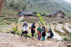 By the field (10b travelling / Carsten ten Brink) Tags: field french asian costume women asia asien southeastasia vietnamese northwest traditional colonial vietnam valley asie catcat sapa hmong hillstation laocai indochine indochina 2015 làocai tenbrink muonghoa carstentenbrink iptcbasic 10btravelling