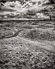 Mima Mounds 3 (mjardeen) Tags: blackandwhite bw plants white black grass clouds contrast landscape ir sony horizon 28mm mama infrared olympia f2 fe cloudporn mounds distant 282 720nm landscapesshotinportraitformat niksilverefex