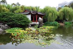 Aus727 - Pagoda on a Pond, Chinese Friendship Garden (Donna's View) Tags: pagoda pond nikon sydney australia waterlilies chinesefriendshipgarden d60