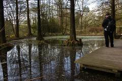 Botanischer Garten BO (hjoachim1) Tags: bochum reflektionen refelections botanischergarten