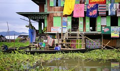 Local shop between beach towels (Bn) Tags: trip houses boy vacation people plants lake holiday mountains green art water shop gardens speed tomato season boats one boat wooden fishing fisherman hands topf50 colorful meer long locals fishermen state burma tail leg farming nowhere paddle free floating cruising villages canoe resort full rainy canoes rowing towels myanmar inle balance local propellers shallow shan visitors 13 paddling topf100 birma outboard channels stilt freshwater throttle waterways hydroponic onelegged boottocht intha nyaungshwe 100faves 50faves shweinnthaflaoting aquabiotic