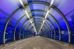 """Transparency"" Poplar DLR Station, London, UK (davidgutierrez.co.uk) Tags: street city uk longexposure greatbritain nightphotography travel blue england people urban color colour building london art colors beautiful station architecture night buildings photography lights twilight nikon europe cityscape colours photographer footbridge unitedkingdom britain dusk vibrant capital arts pedestrian tunnel structure le londres docklands bluehour colourful londra dlr eastlondon docklandslightrailway  towerhamlets londyn ultrawideangle    d810 nikond810 1424mm davidgutierrez londonphotographer afsnikkor1424mmf28ged davidgutierrezphotography footbridgetunnel"