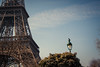 Spring In Paris (Gilderic Photography) Tags: paris france tree bird tower lamp canon tour eiffel arbre oiseau 500d gilderic