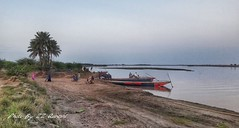 River Jhelum - Khushab, Pakistan (zzqureshi) Tags: pakistan river boat rivercrossing khushab riverjhelum jhelum