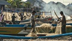 Les pcheurs de Jimbaran, Bali (monilague) Tags: ocean woman mer fish man men net beach fishing fisherman sand day femme sable bateaux jour sailboats filet arbre plage homme poissons pche pcheurs fischermen filsh