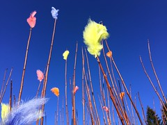 2016 Trip to Sweden - Easter Feathers (Mrs. Gemstone) Tags: trip blue sky contrast easter outside sweden feather visit stark pskvippor