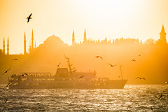 As the day ends, Istanbul (tyil.pics) Tags: sunset ferry seagull istanbul mosque topkapipalace bosphorus nikond810