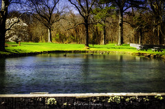 Late afternoon sun at the pond_DSC5804 photoshop NIK edit  (nkatesphotography) Tags: nature landscape outdoors scenic ponds creeks nikon1855mm graemepark nikond7000