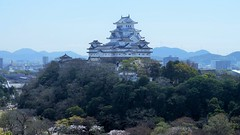 Castle on a hill (Takashi K. A) Tags: castle history japan spring hill   himeji sakura cherryblossoms  nationaltreasure worldheritage   2016