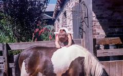 Pony Worship (Jarch21) Tags: film kodak rangefinder pony analogphotography ektar filmphotography canonetql17giii staybrokeshootfilm littledoglaughedstories