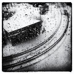 Rain (HKangas) Tags: silverefex