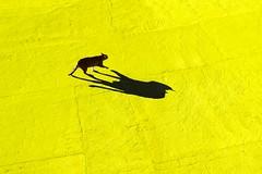 Mi  sembrato di vedere un gatto (meghimeg) Tags: shadow sun yellow cat ombra gelb giallo katze sole cemento gatto dianomarina 2016