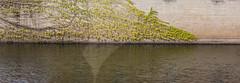 Water line (marcn) Tags: us unitedstates newhampshire nh photowalk daytrip nashua nashuanh nashuastreetpianos