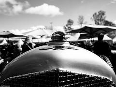 Vintage Race Days 2016 (mthavs) Tags: auto cars car race racecar vintage racing oldtimer autos rennen rennwagen autorennen