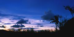 _MG_1802 (Rickard Nilsson) Tags: travel sea nature fiji island village pacific south vitilevu archipelago pacificisland pacificislands viti