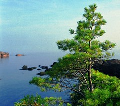 Pebble Beach - 2015- 0005 (cd.northshore) Tags: northshore lakesuperior mamiyarz67proiid