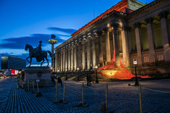 St Georges Hall Poppies (juliereynoldsphotography) Tags: sunset liverpool landscape poppies stgeorgeshall juliereynolds juliereynoldsphotography