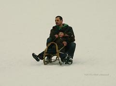 Winter (Natali Antonovich) Tags: christmas family winter portrait snow childhood frost mood belgium belgique belgie lifestyle fatherandson sled sleding sledging lahulpe christmasholidays