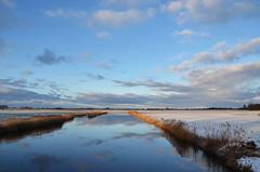 Winterstimmung (antje whv) Tags: schnee winter reflection ostfriesland eis spiegelungen harle