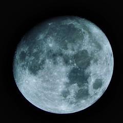 The Moon (scaturchio) Tags: moon nikon 60x p610
