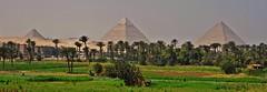 Eternidad (Luis Bermejo Espin) Tags: travel egypt tumbas monumentos egipto pirmides momias guiza faraones faran antiguoegipto egiptologa civilizacionesantiguas antiguascivilizaciones luisbermejoespn monumentosdelmundo