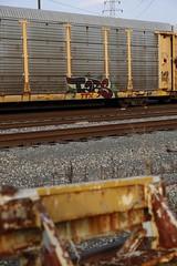 Tars (Revise_D) Tags: graffiti graff freight revised tars fr8 bsgk benching fr8heaven benchingsteelgiants