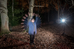 GXCC - Repeating flash - Hands up (jerry_lake) Tags: woods strobe repeatingflash nikonsb900 gxcc gxcommon