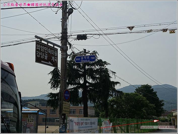 牙山外巖民俗村 (3).JPG