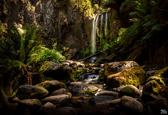 Hopetoun Falls (mark.iommi) Tags: sunlight waterfall au australia victoria hopetounfalls beechforest theotways