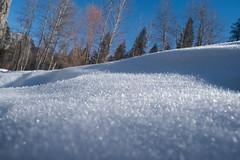 sneg (renrenskyy) Tags: winter snow yosemite nationalparks