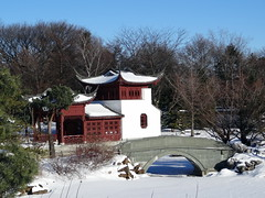 Montreal Botanical Garden (chibeba) Tags: city winter vacation urban holiday canada montral quebec montreal january northamerica qc 2016 citybreak
