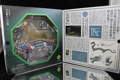 IMG_3169 (faelon312) Tags: dragon ryu revoltech projectkt